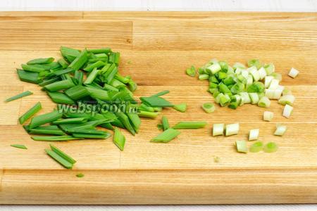 Небольшой пучок зелёного лука хорошо помыть и обсушить, белую часть мелко порезать, а зелёную чуть крупнее.