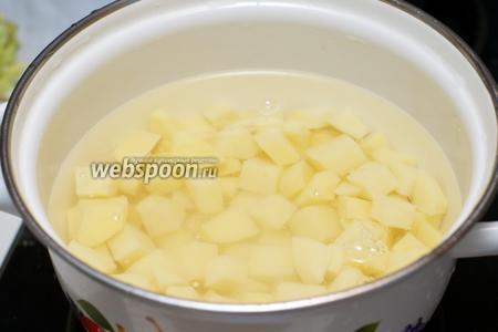 Залить холодной водой, добавить щепотку соли и отварить до готовности — 15-20 минут с момента закипания.