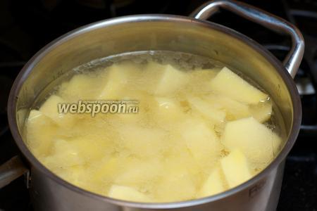 Затем добавить картофель и 700-800 мл холодной кипячёной воды. Довести всё до кипения и варить до готовности картофеля 20-25 минут.