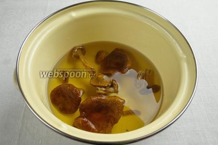 Отварить грибы в той же воде в течение 1 часа.