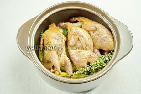 На груши выложить тушки перепелов. Закрыть крышкой. Поставить в горячую 180 °С духовку. Запекать в течение 40 минут.