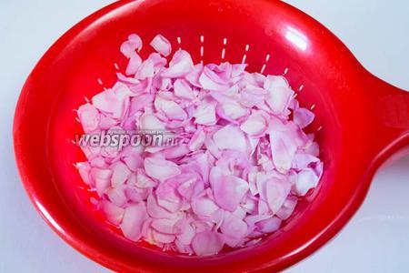 Брать по одному цветку, отрывая цветоложе, крепко держать лепестки цветка. Ножницами срезать белую часть у основания лепестка, остальное сбросить в сито. Обязательно нужно лепестки просеять для отделения от пыльцы (возможно, от мелких жучков). После лепестки промыть и просушить.