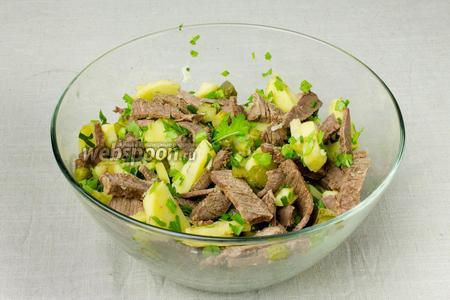 В салатницу выложить салатный микс, картофель, говядину, зелень, корнишоны, сыр. Салат посолить, поперчить и перемешать.