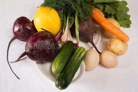 Чтобы приготовить свекольник возьмем свёклу с ботвой, картофель, морковь, лук, огурцы, рубленную зелень, зелёный лук, яйца, свежий сок лимона, соль, сахар, уксус, сметану.