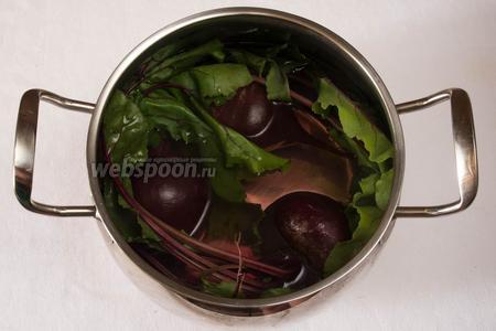 Уложить в кастрюлю свёклу с ботвой, залить горячей кипячёной водой и поставить на огонь. Как только вода закипит, добавить 10 г сахара и 20 мл уксуса (чтобы свёкла быстрее сварилась).