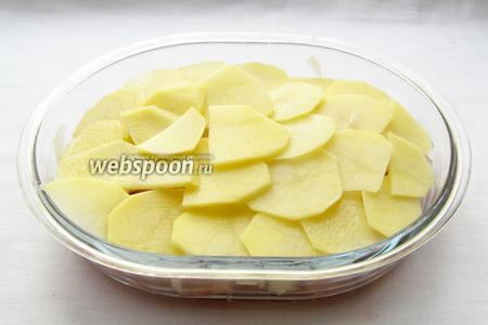 Картофель разложить черепицей в один слой поверх курицы с луком.