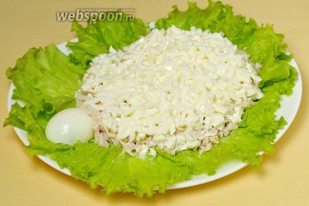 Следующий слой — белок яйца.