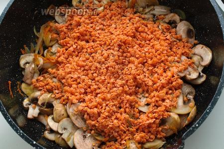 Красную чечевицу промыть и добавить к овощам и грибам. Хорошо перемешать. Залить чечевицу кипятком, поперчить. Накрыть крышкой и варить 15 минут.