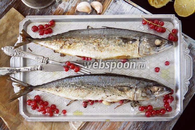 Рецепт Запечённая скумбрия с красной смородиной