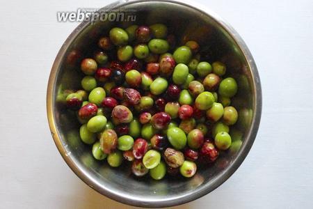 Для засолки нам понадобится свежие оливки. А так же соль и вода для приготовления рассола.