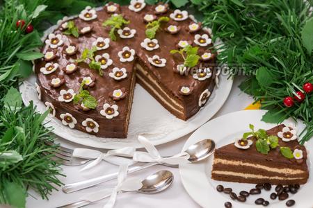 Шоколадно-кофейный торт «Капучино»