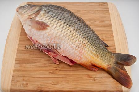Прежде всего рыбу нужно очистить от чешуи, удалить жабры и аккуратно выпотрошить, не повреждая желчный пузырь.