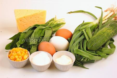 Для приготовления салата нам понадобится черемша, огурец свежий, яйца, консервированная кукуруза, сыр Российский, сметана, майонез, зелёный лук.