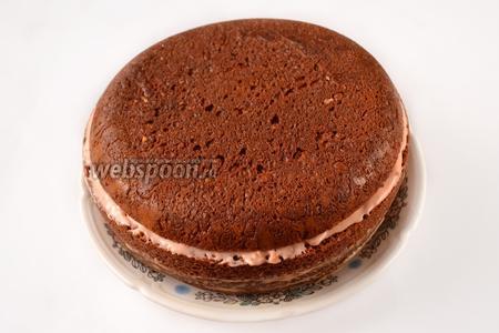 Закрываем торт коржом-верхушкой. Ставим торт в холодильник.