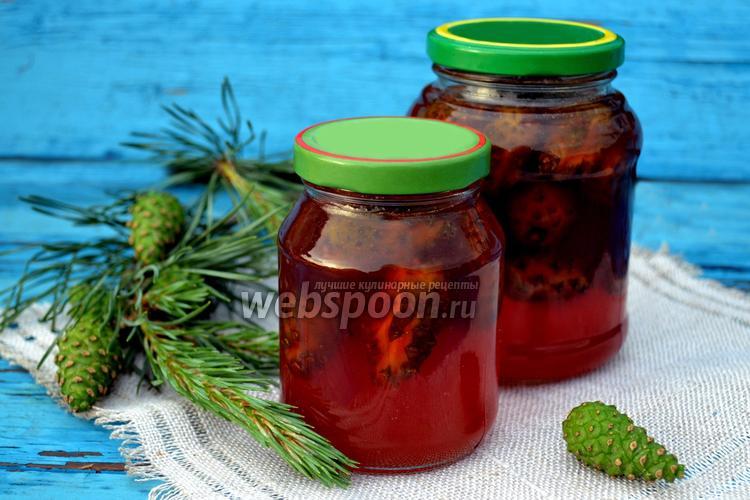 Рецепт Варенье из сосновых шишек