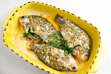 На дно формы для выпечки насыпать немного панировочных сухарей. Маринованную рыбу вынуть из судка. Начинить зелёными букетиками из укропа и петрушки брюшки карасей. Сверху тушки притрусить сухарями.  Поставить форму с рыбой в горячую духовку. Запекать карасей в течение 35-40 минут при температуре 200 °C.