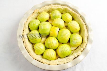 Готовые яблоки разложить по форме. У меня мелкие яблоки, поэтому внизу тонкий слой яблочных долек. Половинка яблока должна быть на уровне с высотой формы.