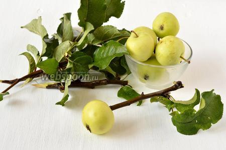 Яблоки помыть, обсушить. Удалить плодоножки. Воткнуть заостренные деревянные палочки в яблоко вместо плодоножки.