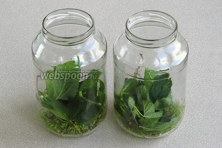 На дно банок ёмкостью 3 л положить пряности и зелень.
