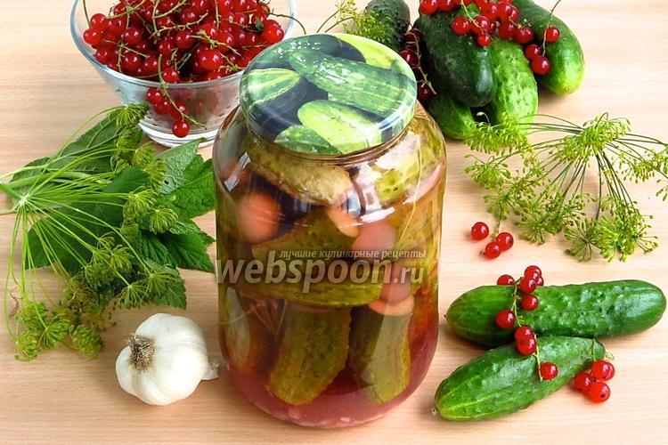 Фото Огурцы, консервированные со смородиновым соком