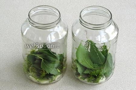 На дно стерилизованных банок выложить чеснок и пряную зелень.