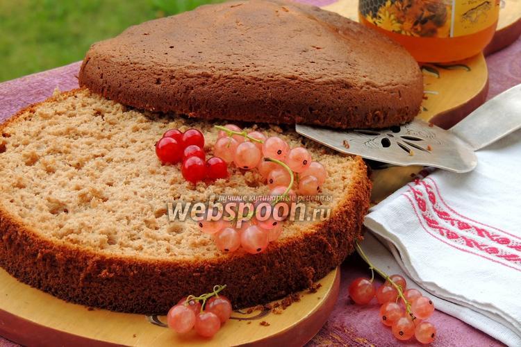 Рецепт Медовый бисквит