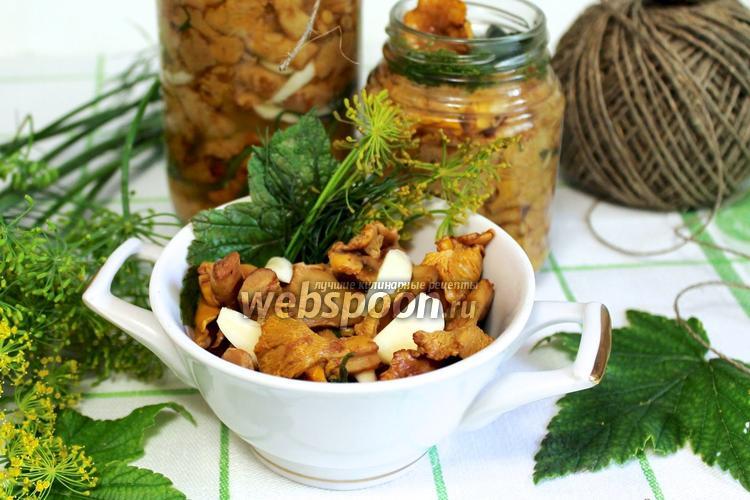 грузди соленые холодным способом рецепт быстрого приготовления