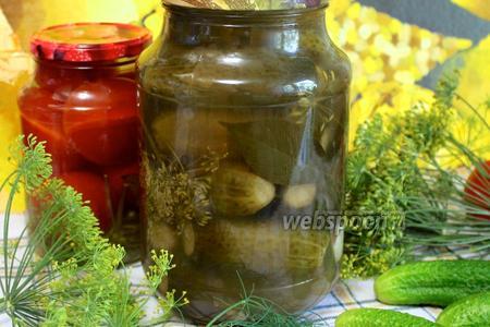 Огурцы солёные консервированные
