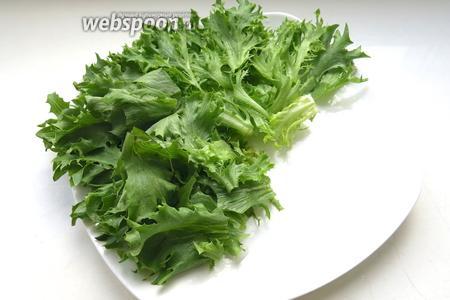 Выкладываем салат промытый и просушенный.