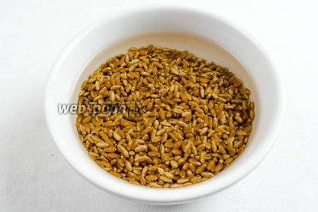 Зёрна пшеницы перебрать. Промыть. Залить водой на 1-2 часа.