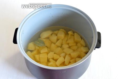 Порезать картофель на куски среднего размера и залить водой на 1,5-2 сантиметра выше уровня картофеля. В воду положить очищенный зубок чеснока и лавровый лист. Добавить соль (у меня мультиварка Polaris).