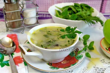 Суп сливочный с курицей и грибами