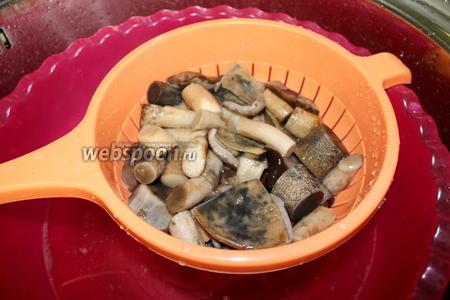 Откинуть грибы на дуршлаг и промыть холодной водой.