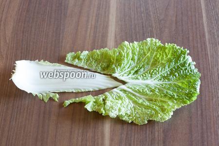 У пекинской капусты вырезаем черенок листа (в них, оказывается, максимальная концентрация нитратов).