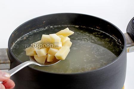 После 1-1,5 часа варки, в бульон добавить картошку, пусть варится, разваривается. Как можно заметить, я её добавляю задолго до капусты и до всего остального. Овощи тушатся, бульон с картошкой и луком варится долго.