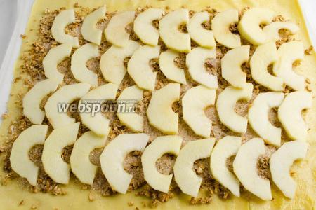 Разложить по всему тесту подготовленные дольки яблок.