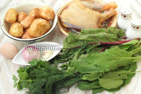 Для приготовления супа нам понадобится курица, картофель, лук, молодая свекольная ботва, щавель, зелень укропа и петрушки.