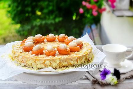 Филадельфия-абрикосовый торт с марципаном