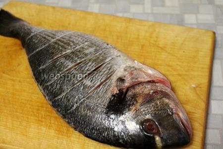 Рыбу очистить, выпотрошить, промыть и осушить. Сделать поперечные надрезы по спинке.