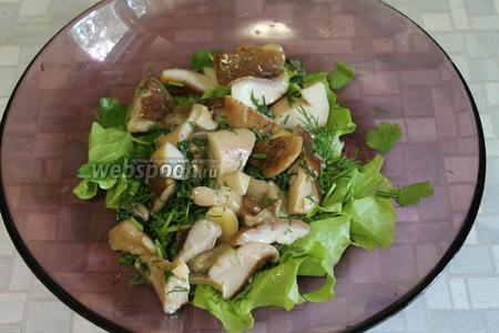 Уложить слой грибов на зелень.