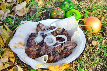 Шашлык из баранины маринованный в киви