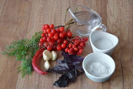 Для приготовления нам понадобится: калина, сахар, соль, укроп, базилик, чеснок, перец острый, вода.