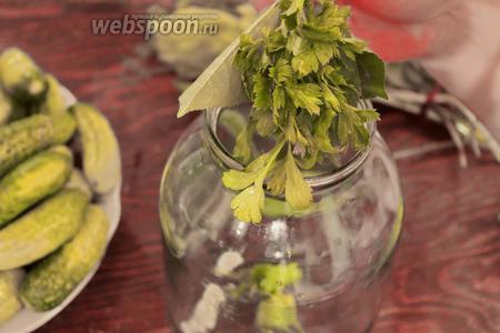 Пока вода греется, в чистые банки (на дно) укладываем чеснок (разрезанный вдоль), 1/4 небольшой луковицы, «букет для огурцов», петрушку.