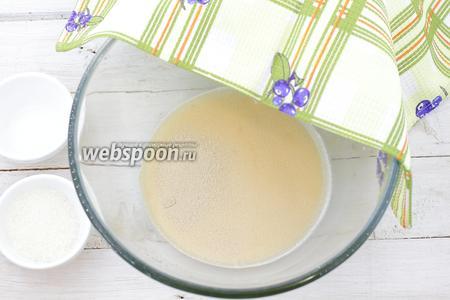 Итак, начните с подогрева молока. Оно должно быть тёплое. Молоко налейте в удобную глубокую посуду, насыпьте 1/2 часть сахара и перемешайте, чтобы растворились сахарные крупинки. Добавьте сухие дрожжи. Чтобы тесто получилось воздушным, нужно «запустить» дрожжи. Оставьте в тёплом месте на 5-10 минут.