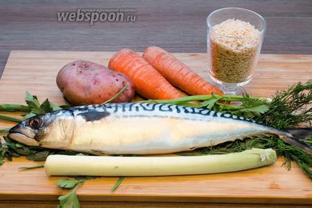 Для приготовления супа из скумбрии нам нужна, конечно же, сама рыба. У меня свежая, можно взять мороженую, у меня рыбка весила 500 г. Ещё нужна морковь, картофель, лук-порей и зелень, какая вам больше нравится. И рис я взяла нешлифованный, можно взять любой, но чтобы он не очень сильно разваривался. Начнём!