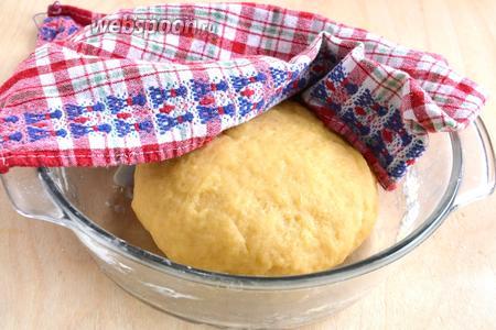 Замесите мягкое эластичное тесто, напоминающее по текстуре тесто для медового торта. Накройте полотенцем и уберите в холодильник минут на 20-25.