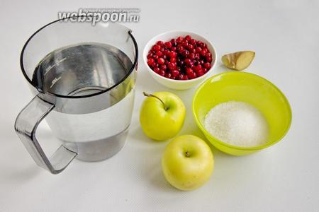 Подготовьте для приготовления напитка воду, яблоки, клюкву, сахар и имбирь.