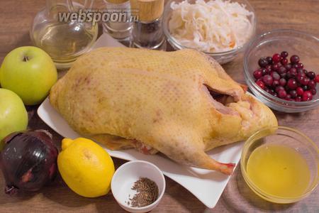 Для приготовления блюда возьмите утку весом 2-2,5 кг, яблоки, лимон, красный лук, мёд, растительное масло, квашенную капусту, клюкву (я использовала замороженную), соль, перец и тмин по вкусу.