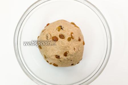 Выкладываем тесто в миску, смазанную маслом. Накрываем плёнкой и ставим в тёплое место на 1,5 часа.