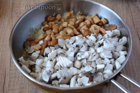 Добавляем порезанные грибы к обжаренному луку, хорошо перемешиваем, тушим на среднем огне 5-7 минут. В процессе жарки необходимо посолить и поперчить грибы.